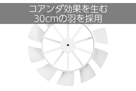 コアンダエア(EF-E949W)