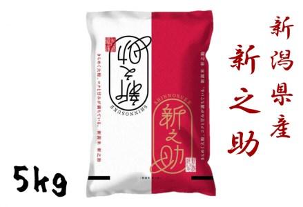 L-4 新潟県産 新之助 5kg