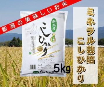 A-28 (令和元年度産新米予約)ミネラル栽培こしひかり 5kg