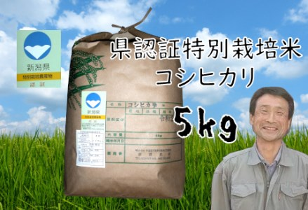 A-2 (令和元年度産新米)阿賀野市産コシヒカリ特別栽培米 3kg