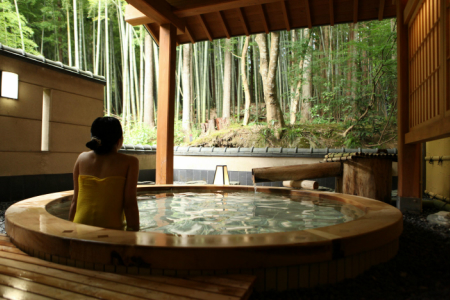 A-1 お好きな旅館で使える 五頭温泉郷割引クーポン(3,000円分)