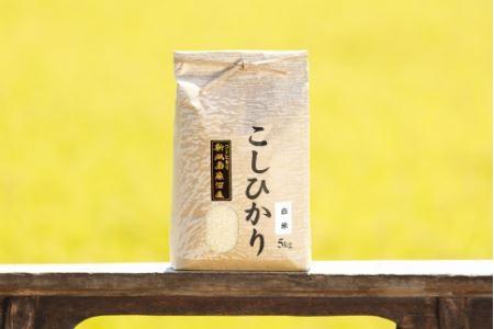 南魚沼産コシヒカリ(白米)【5kg】