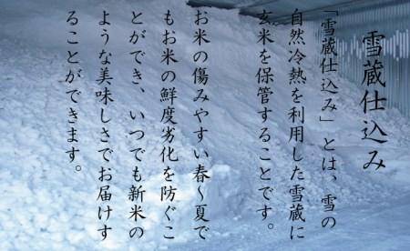 【頒布会】(5kg×全12回)無洗米 南魚沼産こしひかり