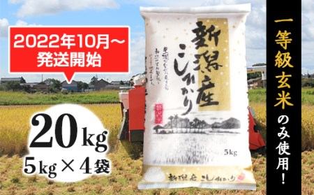31-06新潟県産コシヒカリ20kg(5kg×4袋)