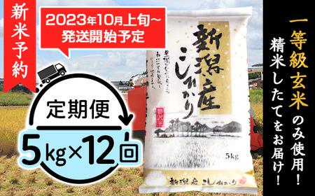 31-05Z【12ヶ月連続お届け】新潟県産コシヒカリ5kg