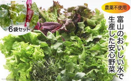 [№5705-0009]富山のおいしい水で生産した安心野菜