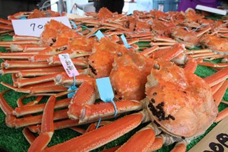 ふるさと納税 かに カニ 蟹