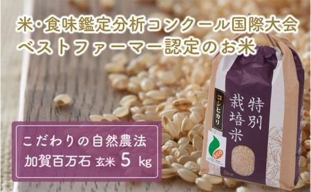 加賀百万石特別栽培米コシヒカリ玄米5kg