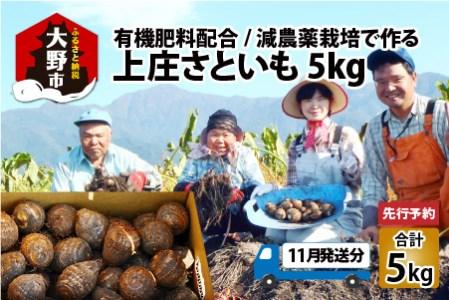 【年内お届け】上庄さといも5kg 日本一の味をめざす特別栽培里芋 クレジット限定