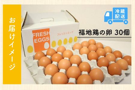 免疫アップ! 濃厚で甘さが絶妙! 福井ブランド「福地鶏」の卵(30個)