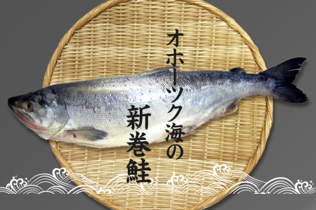 【A2-001】オホーツク産 新巻鮭 切り身姿づくり 約2.3kg