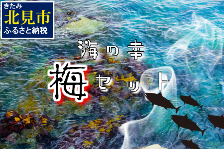 【B-120】組み合わせ自由!海の幸バラエティ「梅」セット