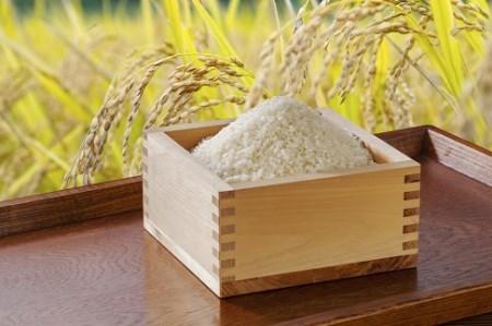 特別栽培米ななつぼし(玄米)10㎏【北海道浦臼町】10,000円