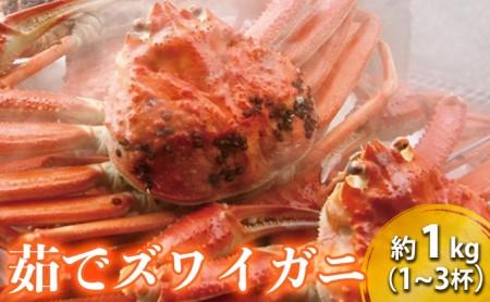 茹でズワイガニ 約1kg(2‐3杯)脚折れ含む ずわいがに ズワイガニ ボイルガニ 蟹 かに カニ