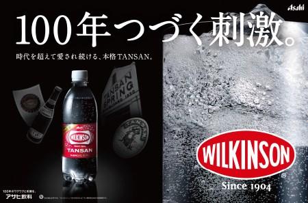 【12ヶ月お届け!】炭酸水 ウィルキンソン タンサン 2箱 (48本入り) 定期便