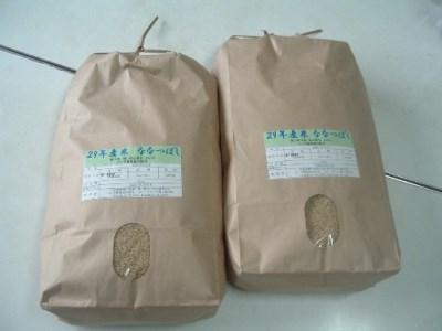 9501 ななつぼし玄米定期便