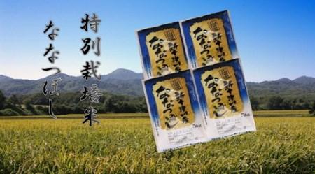3001 ななつぼし特別栽培米