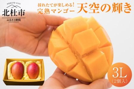 八ヶ岳・完熟マンゴー「天空の輝き」完熟マンゴー 3L(2個入り)