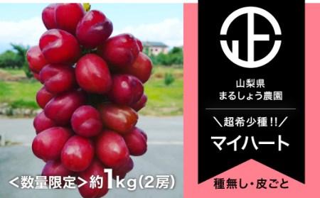 B0-054 【数量限定】マイハート 2房 約1.0㎏ 9月~10月発送