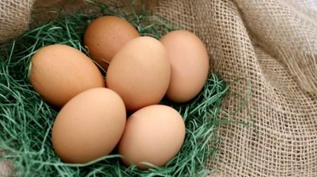 B-506.黒富士農場のバウムクーヘンとカステラと放牧卵のセット