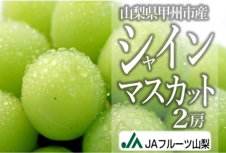 B2-102.甲州市産シャインマスカット2房【80】