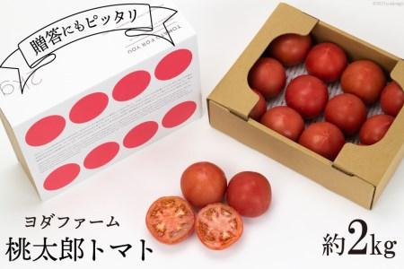安心安全、採れたてを発送!桃太郎トマト約2kg