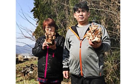 水分たっぷり含んだプリプリ菌床椎茸1kgと干し椎茸