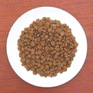 【成犬用フード/オーガニック/鹿肉/有機野菜/低カロリー】一般食 鹿のめぐみ1kg+100g×6