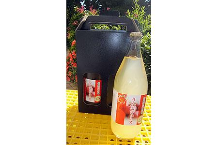 【AA-01】高遠産 リンゴジュース2本セット
