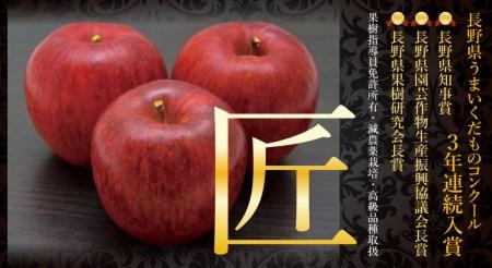 【AB-30】【数量限定!】シナノスイート5キロ 信州が生んだ最高においしいりんご(リンゴ・林檎)シナノスイート5キロ