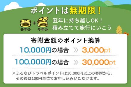 【有効期限なし!旅行で使える】長野県千曲市トラベルポイント