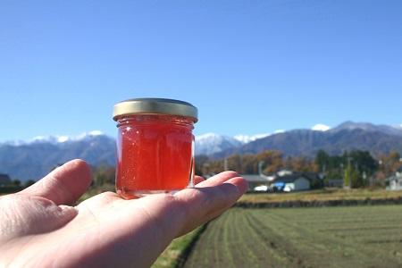 【ふるさと納税】地元の果物を使った季節のこだわりジャムセット