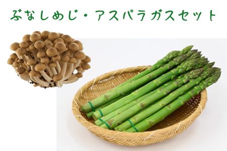 【ふるさと納税】ぶなしめじ(6株)とアスパラガスのセット(4月~8月)