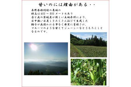 長野県根羽村産 幻の高原とうもろこし 『サニーショコラ』 約3kg(10本~12本)