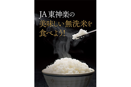 【2624-0048】【12ヶ月定期便】ななつぼし無洗米 5kg×1袋