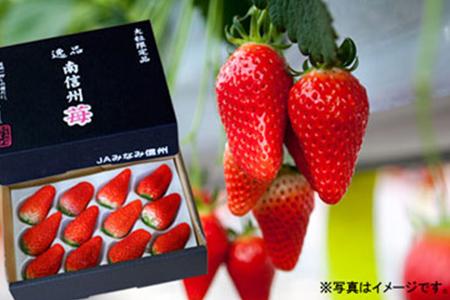 30-A02 喬木産 大粒いちご2箱