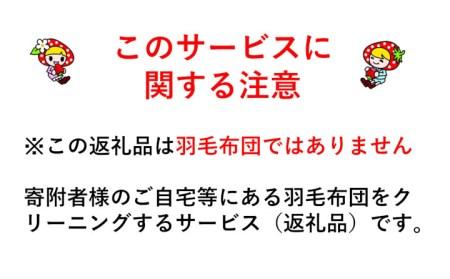 3-U01 羽毛布団丸洗いクリーニング 防ダニ加工付き(シングル1枚)