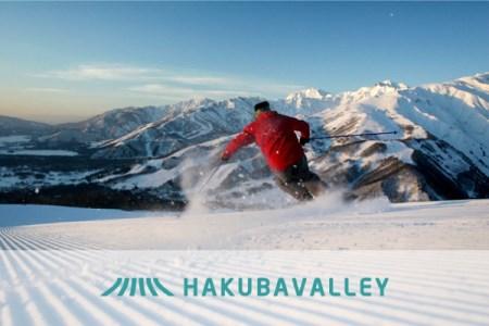 C020-01 HAKUBA VALLEY 10スキー場共通1日券 1枚