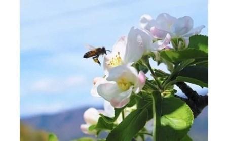 [0778]やまり園のりんごジュース 1000mL×3本 長野県飯綱町産 サンふじ果汁100%