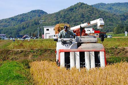 【A54214】愛別町産米(ゆめぴりか2kg&もち米2kg)
