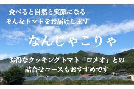 [子どもに人気]4種ミックスミニトマト200g✕5袋(8〜10月発送)[飛騨高山産] a503