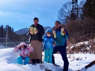 飛騨 山之村 清水さんちの「寒熟だいこん」大根 6kg 3本~6本[A0122]