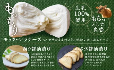 <牧成舎・ふるさと納税限定>飛騨のチーズ&ソーセージ&ヨーグルトセット[B0007]