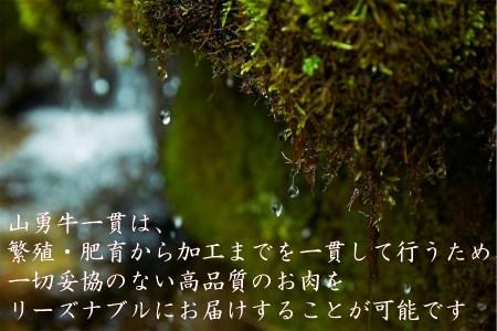 飛騨牛サーロインステーキ250g×2枚[E0020]
