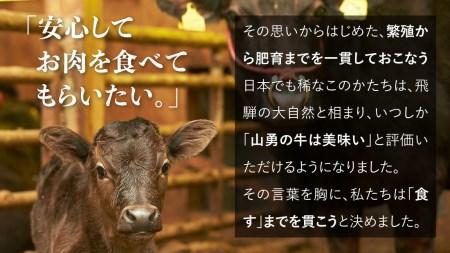 飛騨の牧場で育った熟成飛騨牛『山勇牛』ランプブロック[G0007]