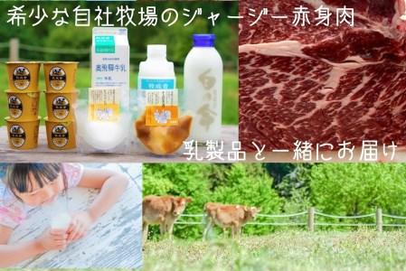 《事前予約制》<希少>自社牧場のジャージー牛の赤身肉切り落とし500g&飛騨の乳製品セット[C0032]