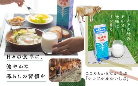 明治30年創業の牛乳屋 牧成舎の低温殺菌牛乳[A0086]