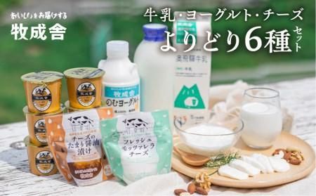 牛乳 から プラスチック を 作る