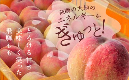 朝採れ 飛騨のこだわり桃 2.5キロ(8-9玉) 秀品 大 直近過去3年の平均糖度15度以上[B0210]