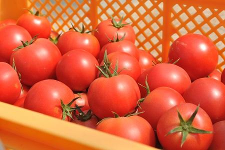 【10001015】大雪山伏流水育ち「輝赤」のトマトジュース